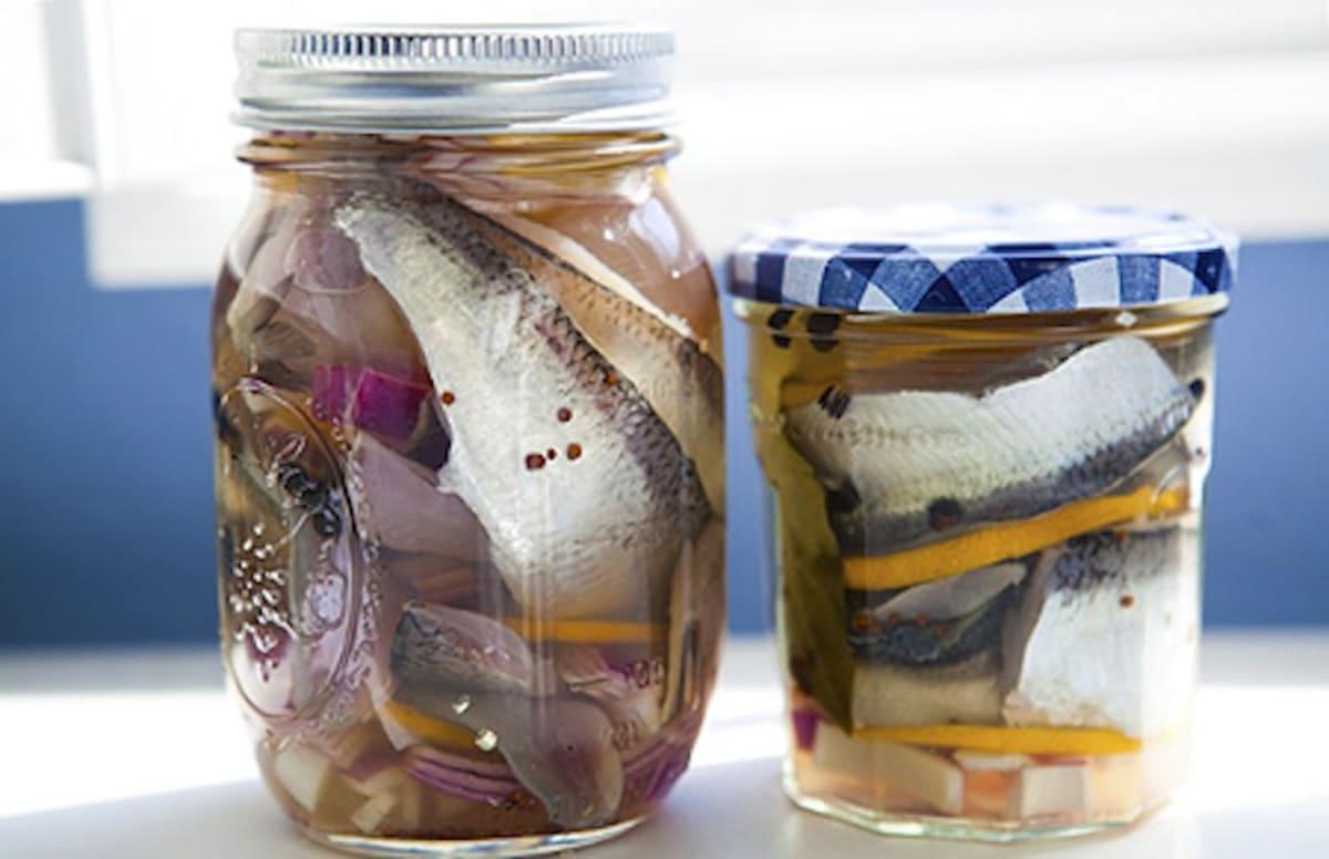 Соление рыбы в домашних условиях сельдь