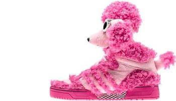 adidas JS Poodle Bloom/Diva-Bloom