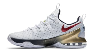reputable site 5a5c5 956cb Nike LeBron 13 Low